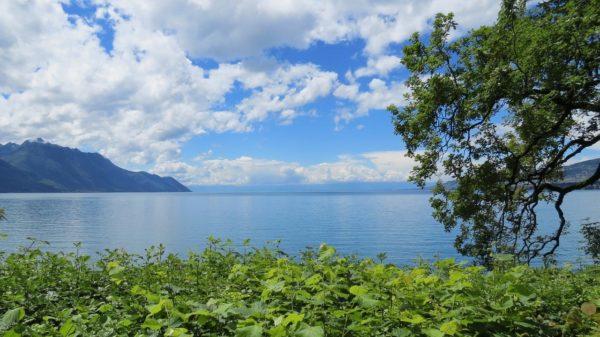 Prix et tendances de l'immobilier à Thonon-les-Bains