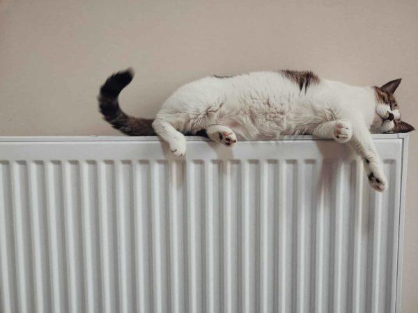 Un propriétaire a-t-il le droit d'imposer un changement de mode de chauffage à son locataire ?