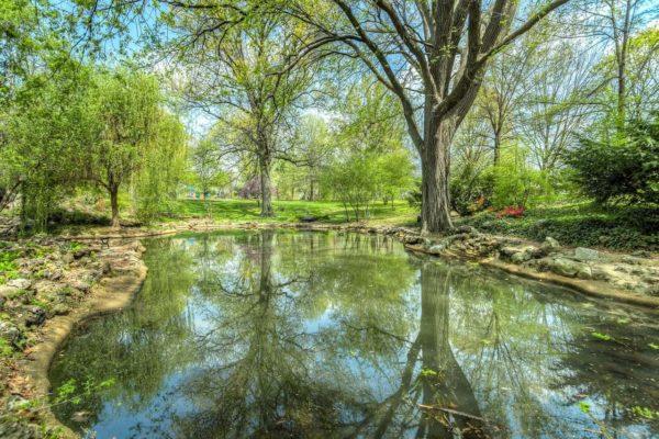 Construction d'un étang : coût et réglementation à respecter